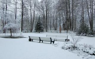 Lumine õueaed_Snowy courtyard